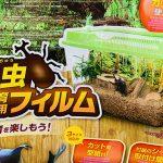 「ダイソー」カブトムシ・クワガタムシ飼育グッズ12選